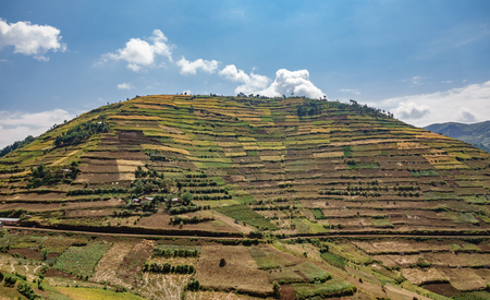 ウガンダで培われた山