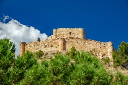 松の木と Jalance 城底面図