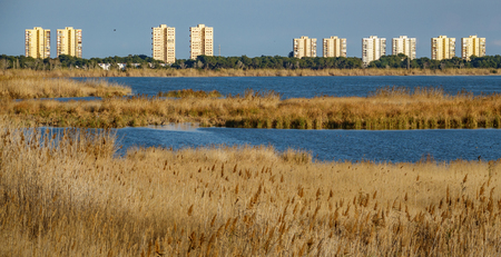 Albufera reserva and residential buildings Stock Photo
