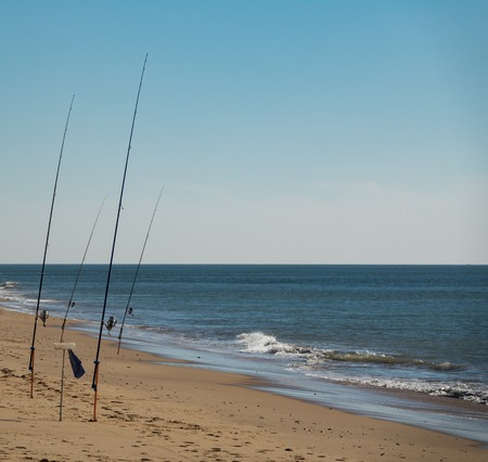 Fishing rods fishing in the beach as automaton machines