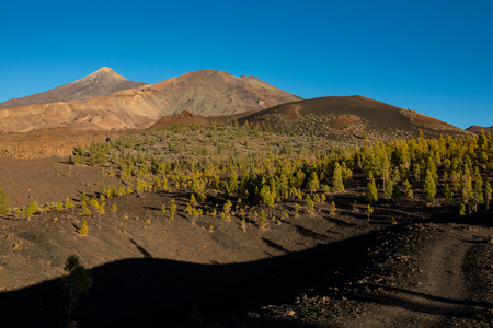 Dusk at Teide and Pico viejo volcanoes