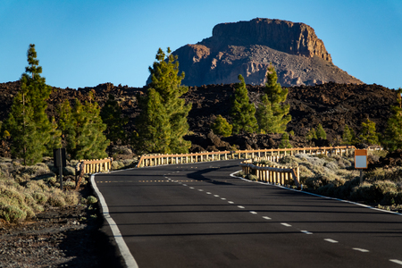 Mountain road with pine trees and mountain peak