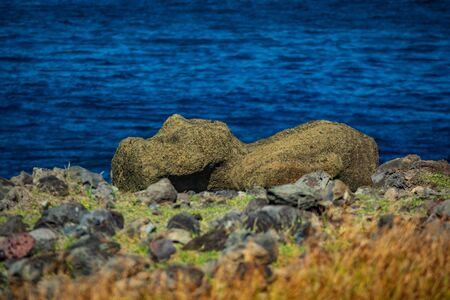 Moai on the ground in Rapa Nui island Banco de Imagens