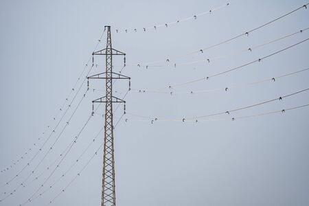Power tower with signals for bird protection Imagens