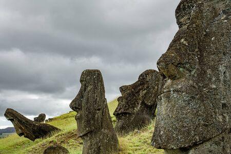 Many moai heads in the Rano Raraku quarry