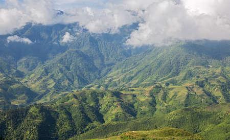 Rice mountain Zdjęcie Seryjne