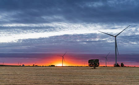 Modern windmills over cultivated fields at orange dusk Stock Photo