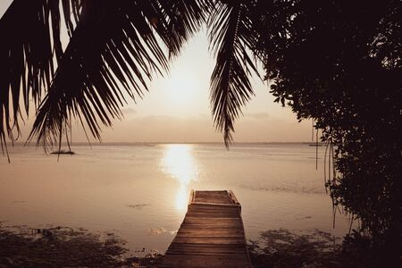 Beautiful sunset reflected in the lake, coconut tree.
