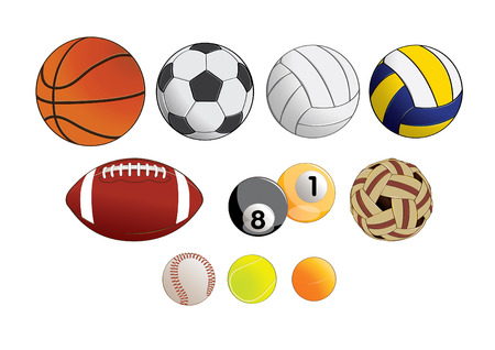 vector illustration graphic Sports Equipment