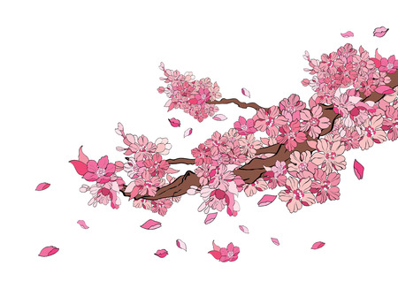 pink bushes: vector illustration  Graphic Tattoo Japanese Style Japan flower