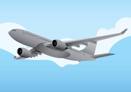 commercial airline: vector  illustration  Graphic  Commercial Aircraft