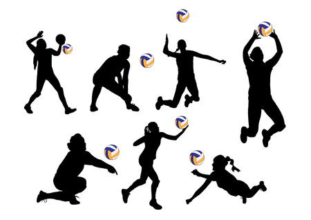 vector  illustration graphic background volleyball players sport
