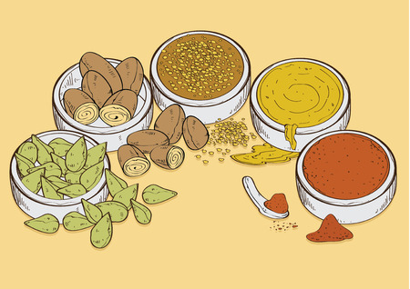 vector  illustration graphic background spices spice curry hot curry soup flavoring flavouring seasoning food