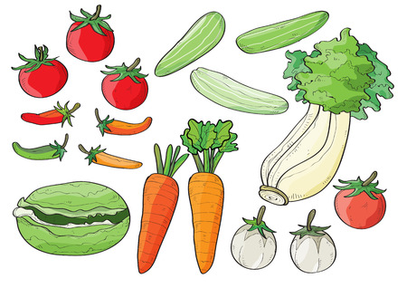vector illustration graphic background Vegetable carrot tomato chilli cucumber Lettuce cabbage draw lined pattern