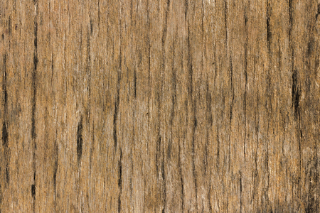 black mold: Old wood with black mold form Asia