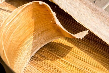 bark palm tree: Palm tree bark texture Stock Photo