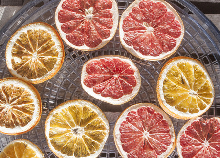 drier: Drying grapefruits and oranges, on a drier Stock Photo