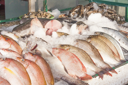 fishy: Fish shop full of tasty fish, at the island of Phu quoc