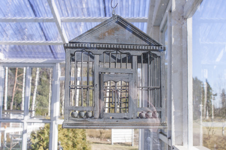 jail break: A bird cage hanging from the top a of a greenhouse