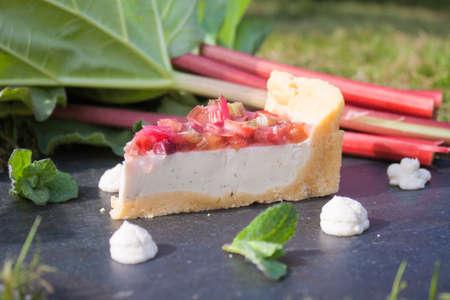 Rhubarb cake slice,between rhubarb, mint and pannacotta, in the garden photo