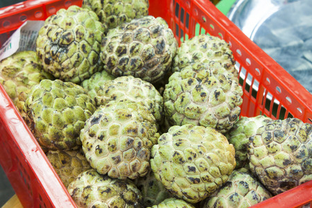 annona squamosa: A lot of green custard apples, Annona squamosa, at a market in Phu Quoc, Vietnam Stock Photo
