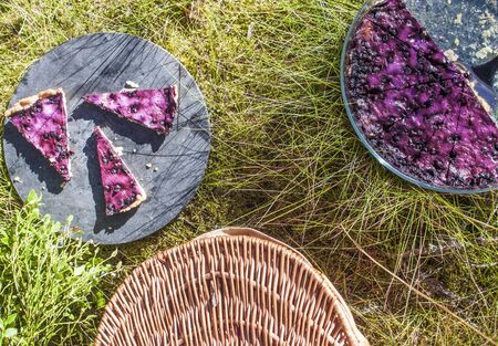 picknick: Bilberry, vaccinium myrtillus pie, at a picknick, in the forrest