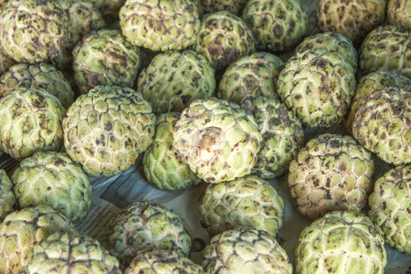 custard apples: A lot of green custard apples, at a market in Phu quoc, Vietnam