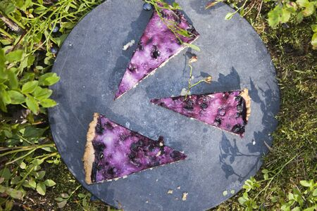 blueberry pie: Blueberry pie pieces, near vaccinium myrtillus berries and plants Stock Photo