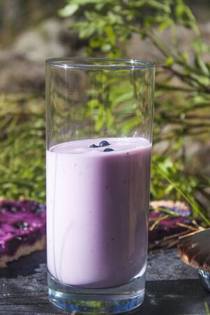 picknick: Purple blueberry yoghurt, at a picknick table