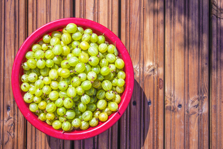 ribes: A red box full of green gooseberries, ribes uva-crispa, on wooden background Stock Photo