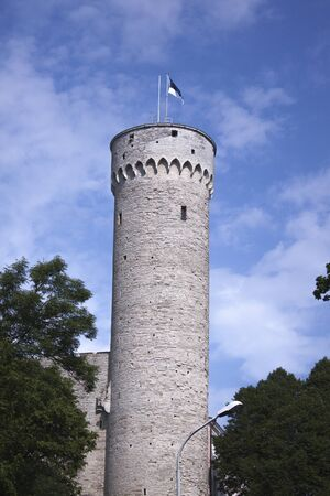 herman: Toomplea castle and Long Hermann tower, in tallinn, estonia