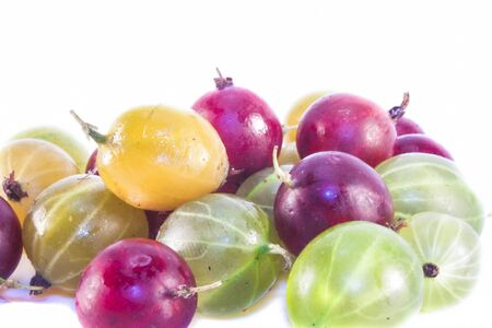ribes: Yellow, red and green Gooseberries ribes uva-crispa, isolated on white background