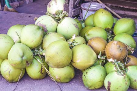 cocos nucifera: A big pile of green coconut, Cocos nucifera at a market, in Phu quoc, Vietnam