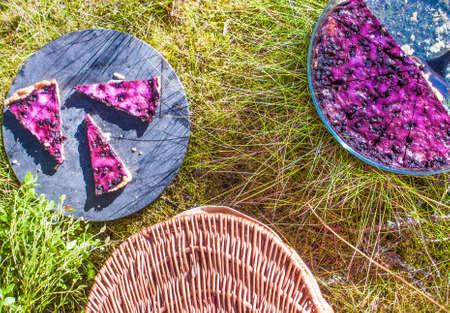 picknick: Bilberry, vaccinium myrtillus pie, at a picknick, in the forrest