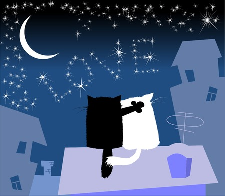 falling in love: cat and his girlfriend were sitting on the roof at night and look at the stars;