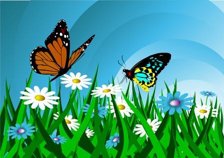 Two butterflies flutter above a field of flowers Stock Vector - 7918456