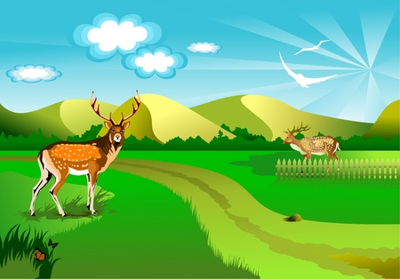 illustration of an idyllic sunny nature background with a blue gradient stripes sky, birds, green grass layers of grass and romantic sky,  Stock Vector - 9169448