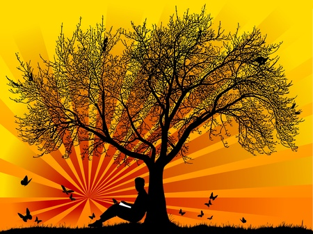 Silhouette of a man with butterflies with a sunset or sunrise;  Vector