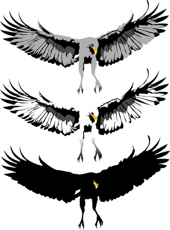 cross hatched: Eagle claws. Three color choices. Vector-illustration;