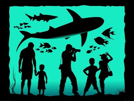 Aquarium visitors watching its inhabitants  illustration ;  Vector
