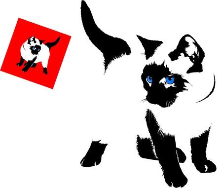 Siamese kat silhouet op een witte achtergrond Stock Illustratie