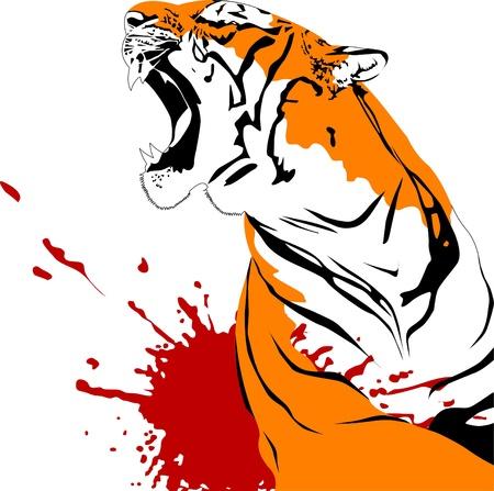 agression: f�roce tigre avec la bouche illustration vecteur libre;