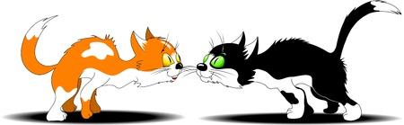 los gatos de color rojo y negro con manchas blancas se prepara para pelear;