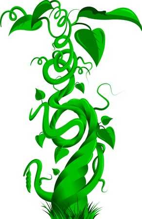 Vector illustration of a bean stalk on the fairy tale Jack and the Beanstalk Çizim