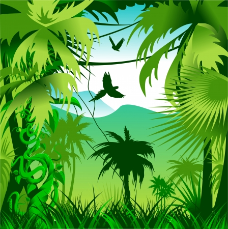 coniferous forest: Coniferous green forest with natural light  Vector-illustration Illustration