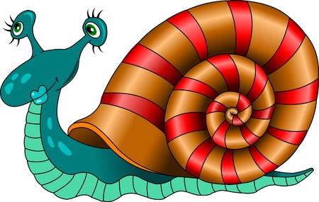 Illustration of the snail with different shells on a white background Vector