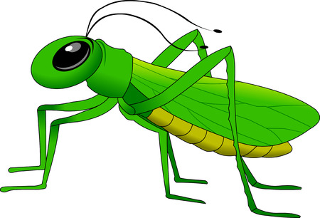 cheerful, small, green grasshopper Vector
