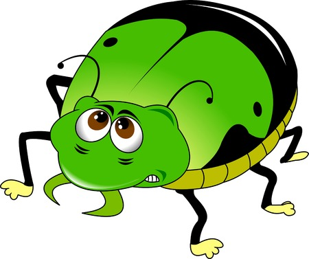spearman: Angry green beetle with black spots on the back