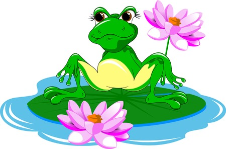 lily pad: Big green frog on a white background, vector