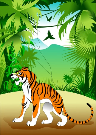 loose: angry tiger on the loose,  illustration